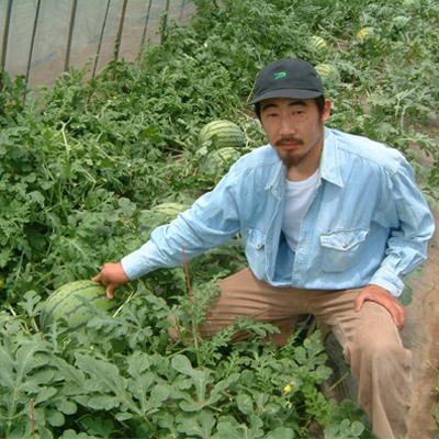 けんちゃんの漢方栽培スイカの商品イメージ